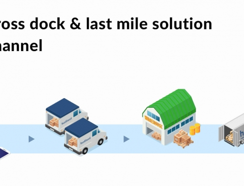 Tech-enabled cross dock & last mile solution for B2C sales channel